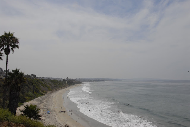 coastline view pacific ocean: LadyD Books