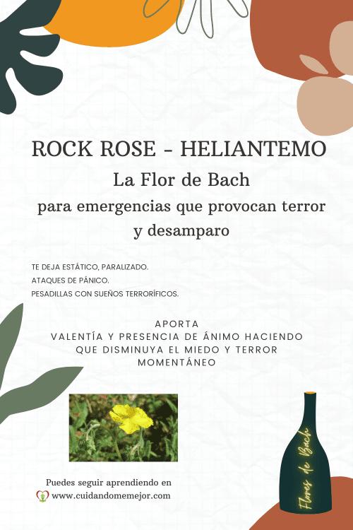 características de la Flor de Bach Rock Rose