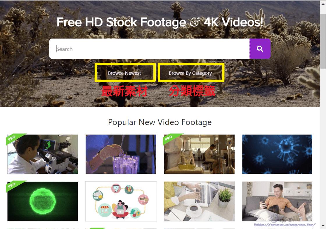 Videezy 高畫質短片素材網站
