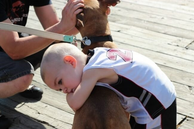 25 Thrilling Images That Made Our Day - That's what it feels like to hug your best friend.