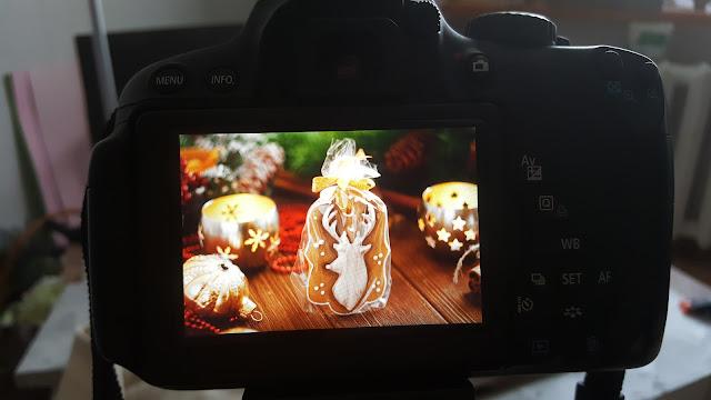 https://www.shutterstock.com/g/TorriPhoto/sets/1567586?page=2