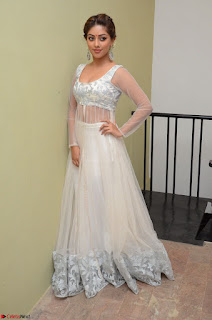 Anu Emmanuel in a Transparent White Choli Cream Ghagra Stunning Pics 082.JPG