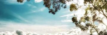 Gunung Artapela, Wisata Pendakian Dengan Trek Yang Ringan Dan Cocok Untuk Pemula