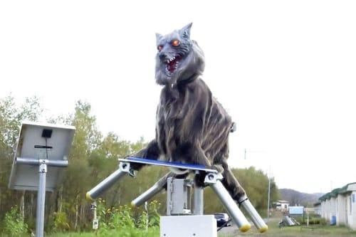 Robotic wolves block Japanese bears' attacks