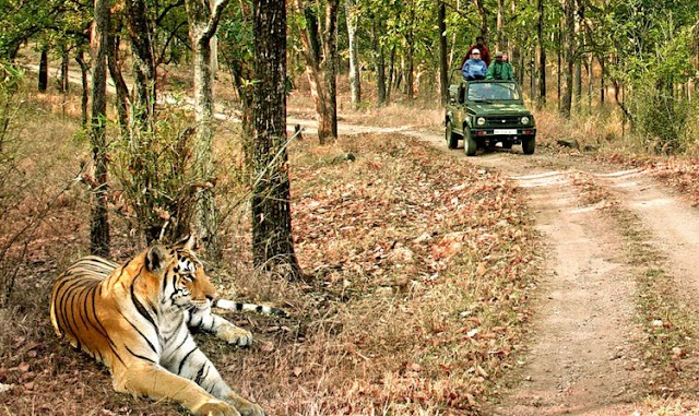 Want to know the best way to reach Jim Corbett? Here it is…