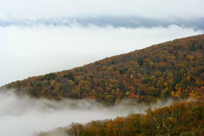 fog on skyline drive