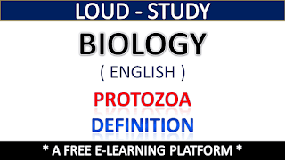 Protozoa Definition
