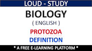 Protozoa Definition