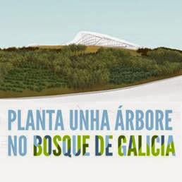 Asociación de Veciños Raigame: Planta unha árbore no Bosque de Galicia