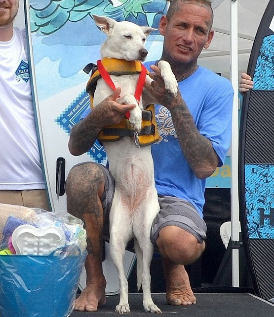 Helen Woodward Animal Center's 15th Annual Surf Dog Surf-A-Thon Goes Global to Help Orphan Pets
