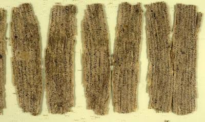 Frammenti di corteccia di betulla scritti dall'antico Gandhara.