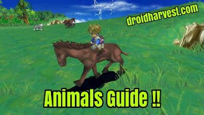 Harvest Moon: Innocent Life Animals Guide