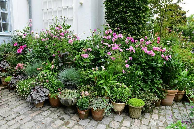 Componer jardines con macetas guia de jardin - Macetas de jardin ...