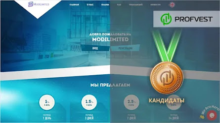 Кандидаты: ModiLimited – 17% чистой прибыли за две недели!