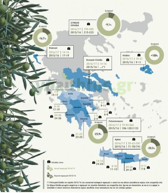 Μειωμένη αναμένεται φέτος η παραγωγή ελαιολάδου