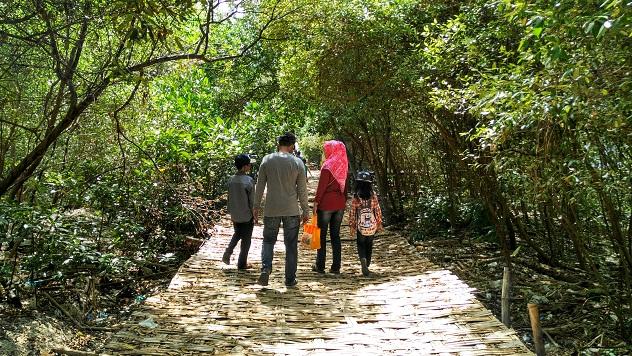 jogging track mangrove surabaya