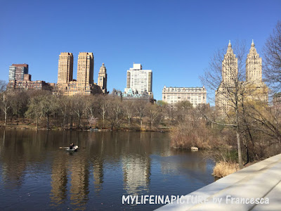 Photo by Francesca,city New York, spring