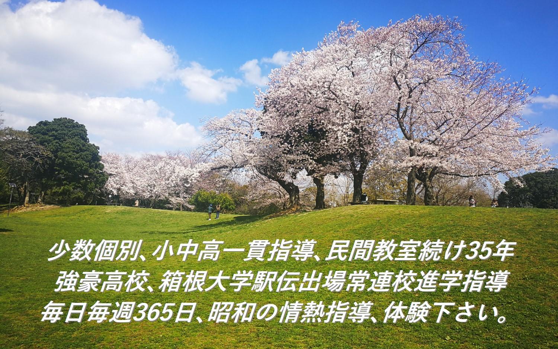 大学駅伝進学指導/小中高/登山登坂勾配/福岡陸上つつみ教室