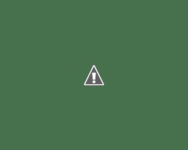 Avec un look rafraîchi, Facebook Messenger a eu la possibilité d'utiliser plus de réactions. Nous ne sommes plus limités à l'expression standard et pouvons répondre aux messages avec des réponses non standard, il y a donc un grand nombre d'emojis disponibles.