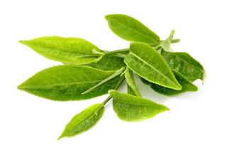 cara menghilangkan jerawat dengan teh hijau