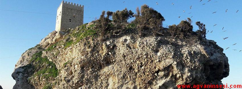 Tatilcilerin Merak Ettiği Şile Ocaklı Kalesi