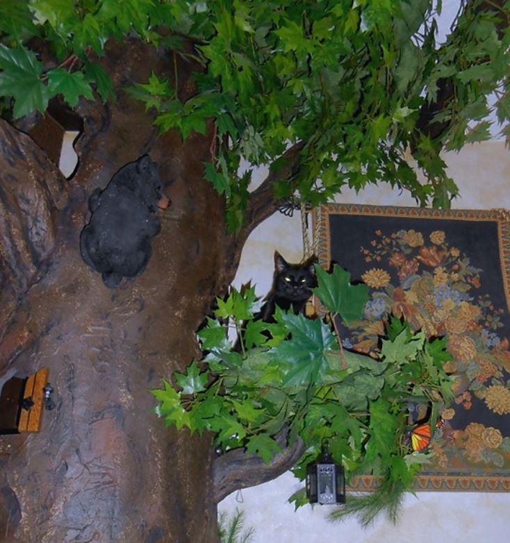Natural Wood Cat Trees