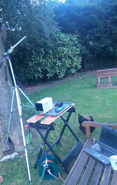 Satellite uplink setup in garden with chicken