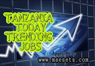 3000+ Trending Jobs Tanzania From Government And Private Sector | 20th September 2019
