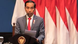 Jokowi Mengaku Belum Ketahui Apa Isi RUU HIP, Sebut 100 Persen Inisiatif Dewan