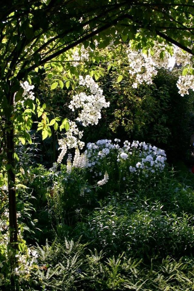 Ilclanmariapia scrittrici in giardino 1 - Il giardino di elizabeth ...