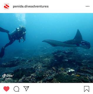 Manta Point, Sumber : Instagram @penida.diveadventure