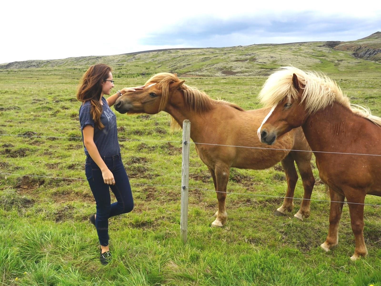 Hveragerdi, gorące źródła, Reykjadalur, Islandia, blog o Islandii, praca w Islandii, pani dorcia, blog podróżniczy, blog fotograficzny