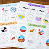 Animal Characteristics (Vertebrates) Learning Pack