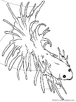 Tropical Fish Kids Coloring Pages