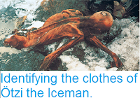 http://sciencythoughts.blogspot.com/2016/08/identifying-cloths-of-otzi-iceman.html