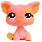 Littlest Pet Shop Dioramas Pig (#919) Pet
