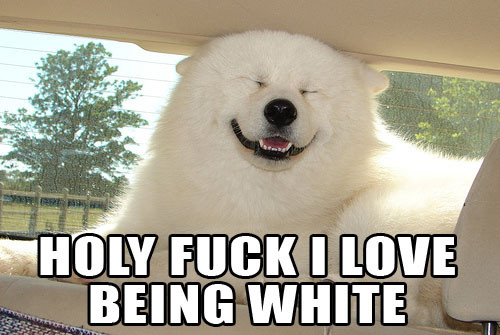 [Image: holy+fuck+I+love+being+white.jpg]