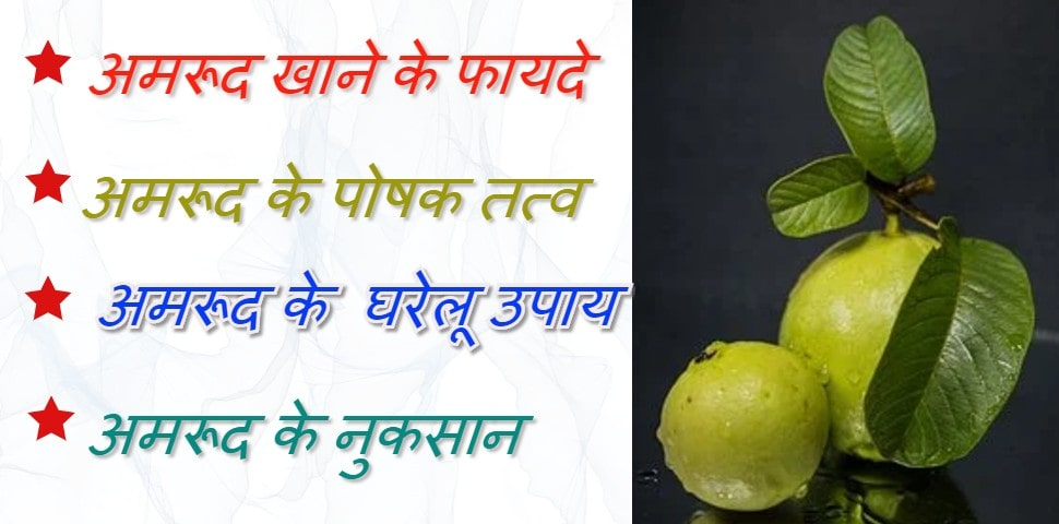अमरूद खाने के फायदे और नुकसान | Benefits and harms of eating guava in hindi