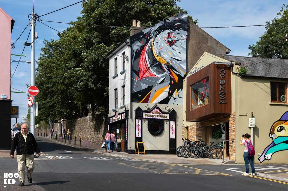 Irish street art in Waterford, Ireland