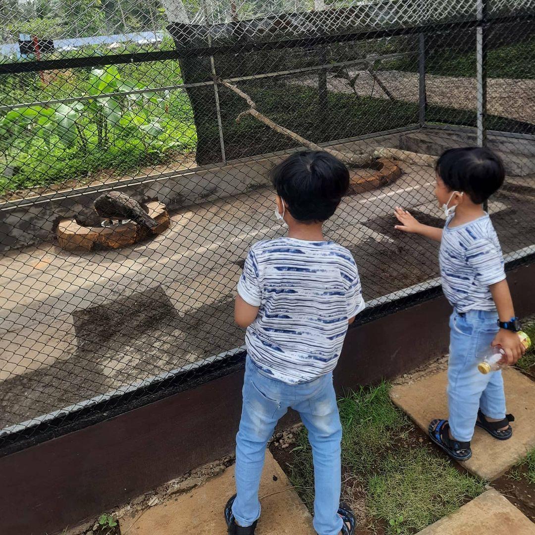 wisata kebun binatang banyuwangi