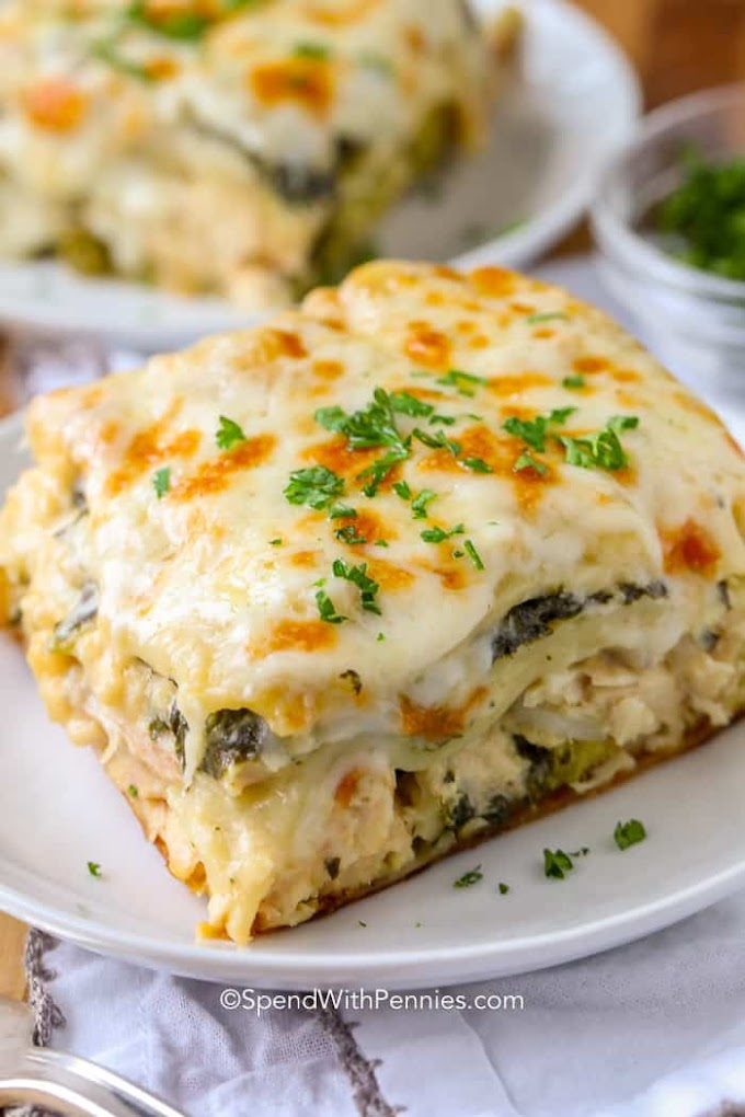 CHICKEN LASAGNA #lasagna #healthydinner #vegetarian #lunch #yummy