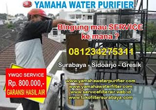 Service filter air Yamaha OH300