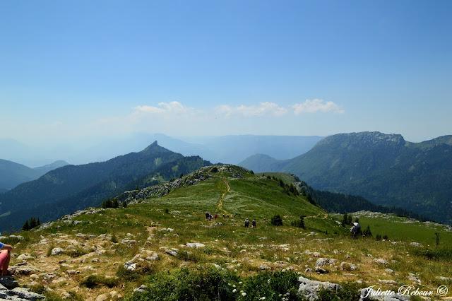 Alpage du Charmant Som et sommet de la Pinéa