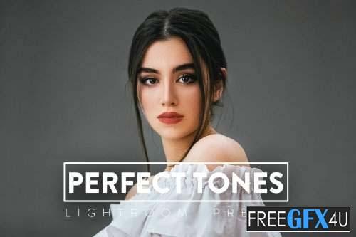 10 Perfect Tones Lightroom Preset
