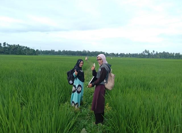 Menteri Desa, Pembangunan Daerah Tertinggal dan Transmigrasi, Eko Putro Sandjojo mengatakan, infrastruktur yang dibangun oleh dana desa berkontribusi membantu meningkatkan pendapatan petani Indonesia.