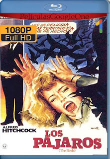 Los Pajaros [1963] [1080p BRrip] [Latino-Inglés] [GoogleDrive] RafagaHD