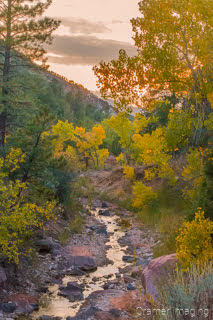 Cramer Imaging's fine art landscape photograph of fall or autumn colors and a stream at sunset in Kolob Canyon Zion National Park Utah