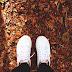 Dolgok, amiket szeretek az őszben