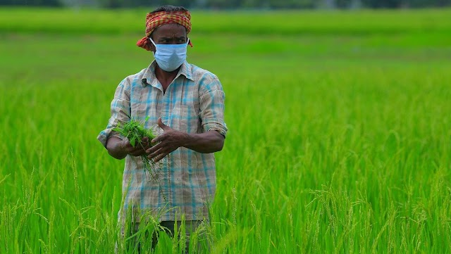 Introduction : Indian Farm Reforms 2020 - Atharva Ahire