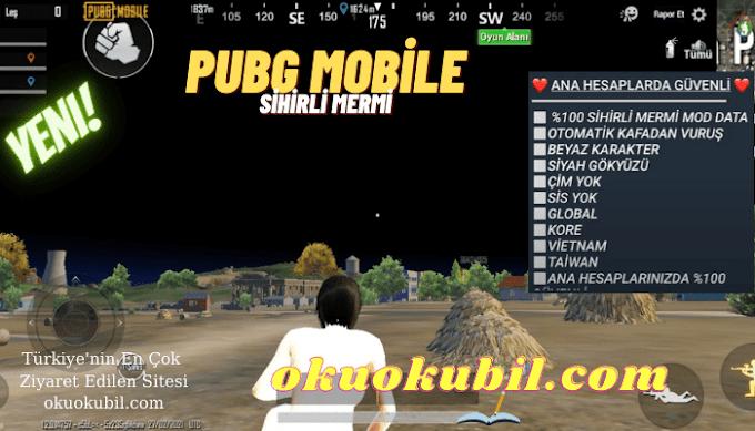 Pubg Mobile Sihirli Mermi Mod Data, Beyaz Karakter, Çim Yok Ana Hesap